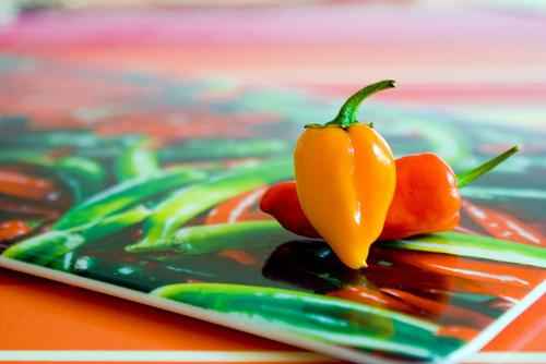 Die kleinen fiesen Chili ©Flickr/ Nina Yasmine