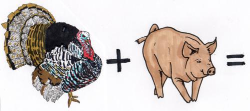 Truthahn + Schwein = ? ©Antje Sachwitz