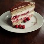 Eine Cranberry-Torte aus Buchweizen und Sahne