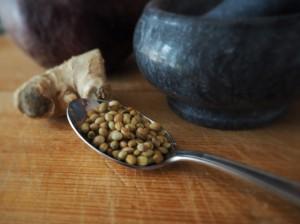 Rote-Bete-Suppe: Koriandersamen und Ingwer